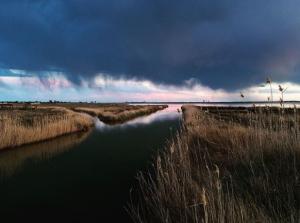 delta dell'ebro