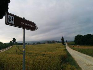 Migliori libri sulla via Francigena