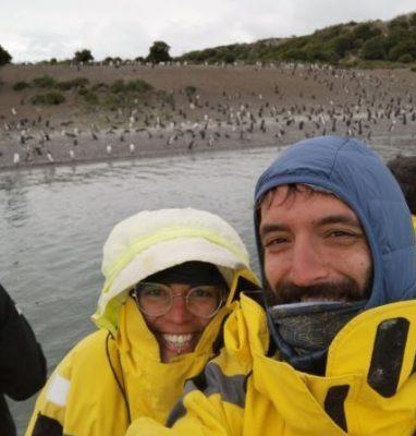 Cosa vedere a Ushuaia - Pinguini di Magellano