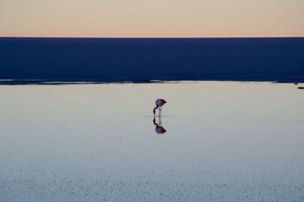 Visitare il Salar di Uyuni